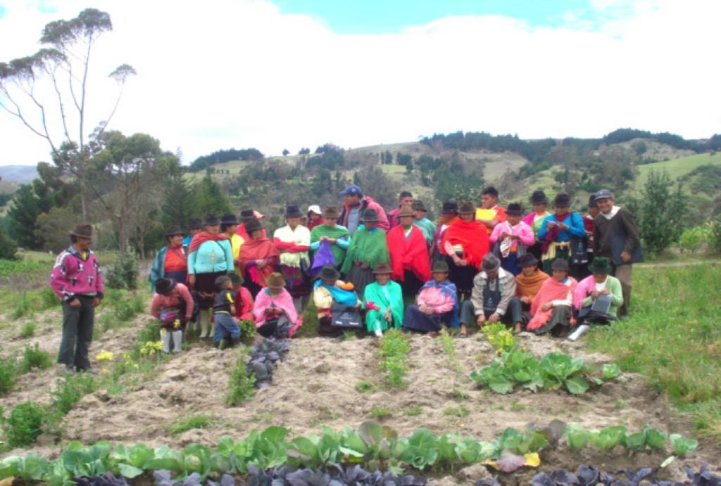 Comunidad Guayama San Pedro